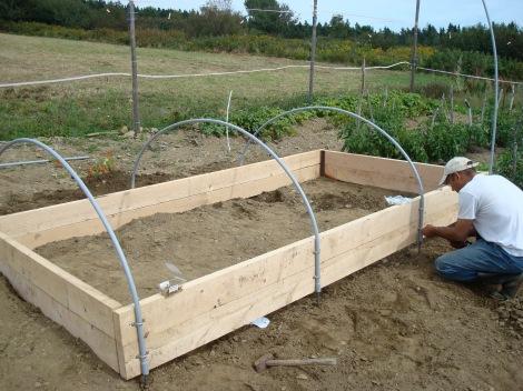 Building a hoop house