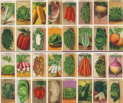 vintage-seeds2